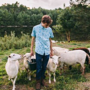 Southern Maine senior photography by Birch Blaze Studios. A young man with his sheep herd in Maine.